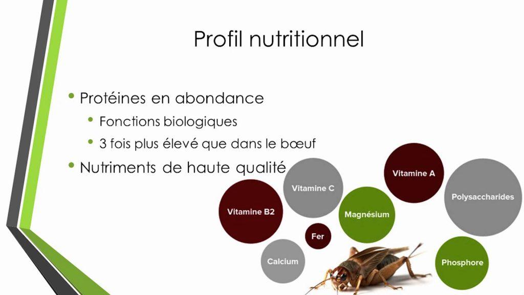 les insectes comestibles renferment une quantité phénoménale de nutriments essentiels à la croissance du corps humain.